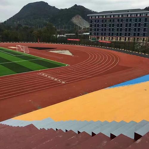贵州农业职业学院 塑胶跑道、球场、草坪